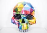 Okuda - Skull